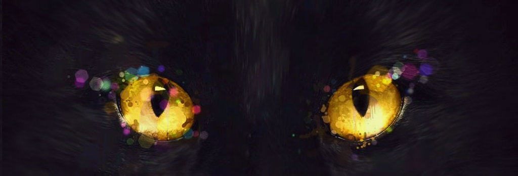 Skin the Cat Marketing, Graphic Design & Copywritin